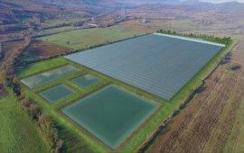 Anche le startup coltivano pomodori, nasce la serra hi-tech più grande d'Italia