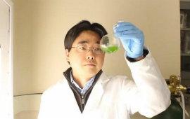 Dalla saliva all'acqua salata: il futuro delle batterie è nelle rinnovabili