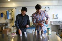 Questa startup fa latte super proteico dai piselli. E ha già raccolto 13,6M