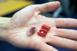 """Robot """"origami"""": può operare dall'interno del corpo"""