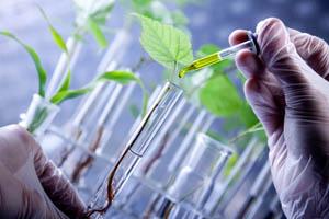 BioInItaly / StartUp Initiative Biotech & Healthcare 2017