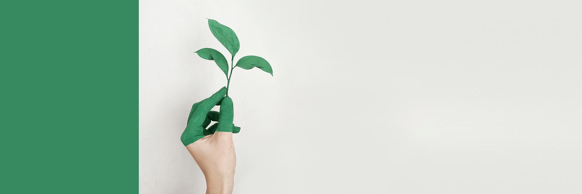 Driving innovation-led sustainability