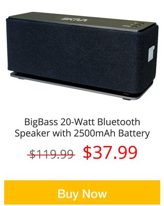BigBass 20W Bluetooth Speaker