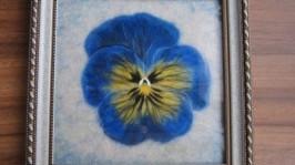 «Синий цветок»
