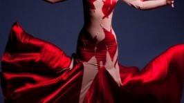 Платье для бальных танцев (стандарт) Dance of fla