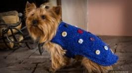 Накидка для собак. Одяг для собак. Накидка для Йоркширських терєрів