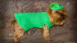 Зелене плаття для собак. Вязаний одяг для собак. Одяг для тварин.