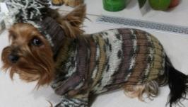 Свитер и шапочка для собак