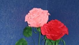 Цветы для фотосессий