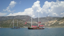 Фото картина - Море яхты