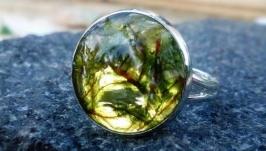 перстень з моху