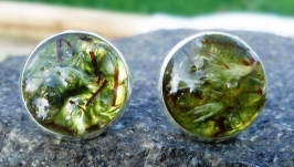 Сережки-цвяшкі з моху