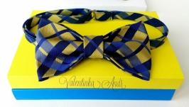 Галстук - бабочка в сине-золотом цвете для мальчика. Краватка метелик.