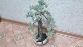 Дерево для декора!