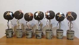 Топиарий из зерен кофе. Подарок, сувенир, декор для кафе