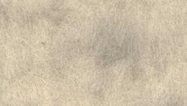 Кардочес 5012