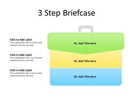 3 Step Briefcase