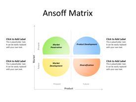 Ansoff Concept