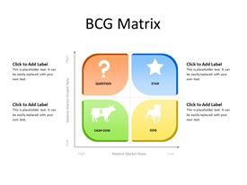 BCG Matrix concept