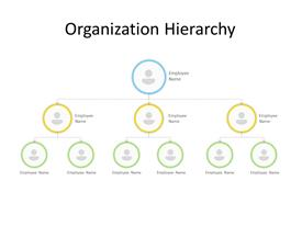 Organization chart with 3 level of hierarchy