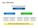 PowerPoint Slide - This PowerPoint slide shows a Organization Hierarchy diagram.
