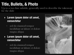 Title, Bullets & Photo Slide