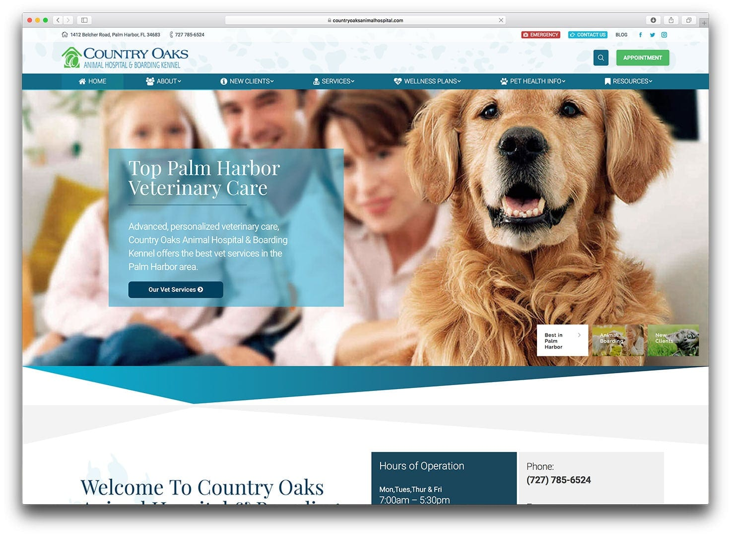 Veterinary Web Design - Tampa - After