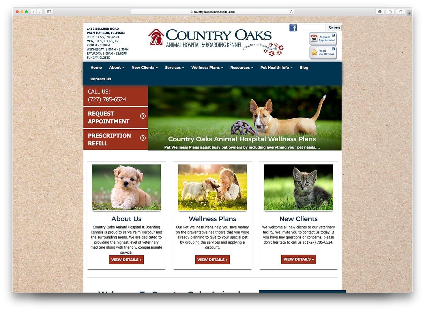 Veterinary Web Design - Tampa - Before