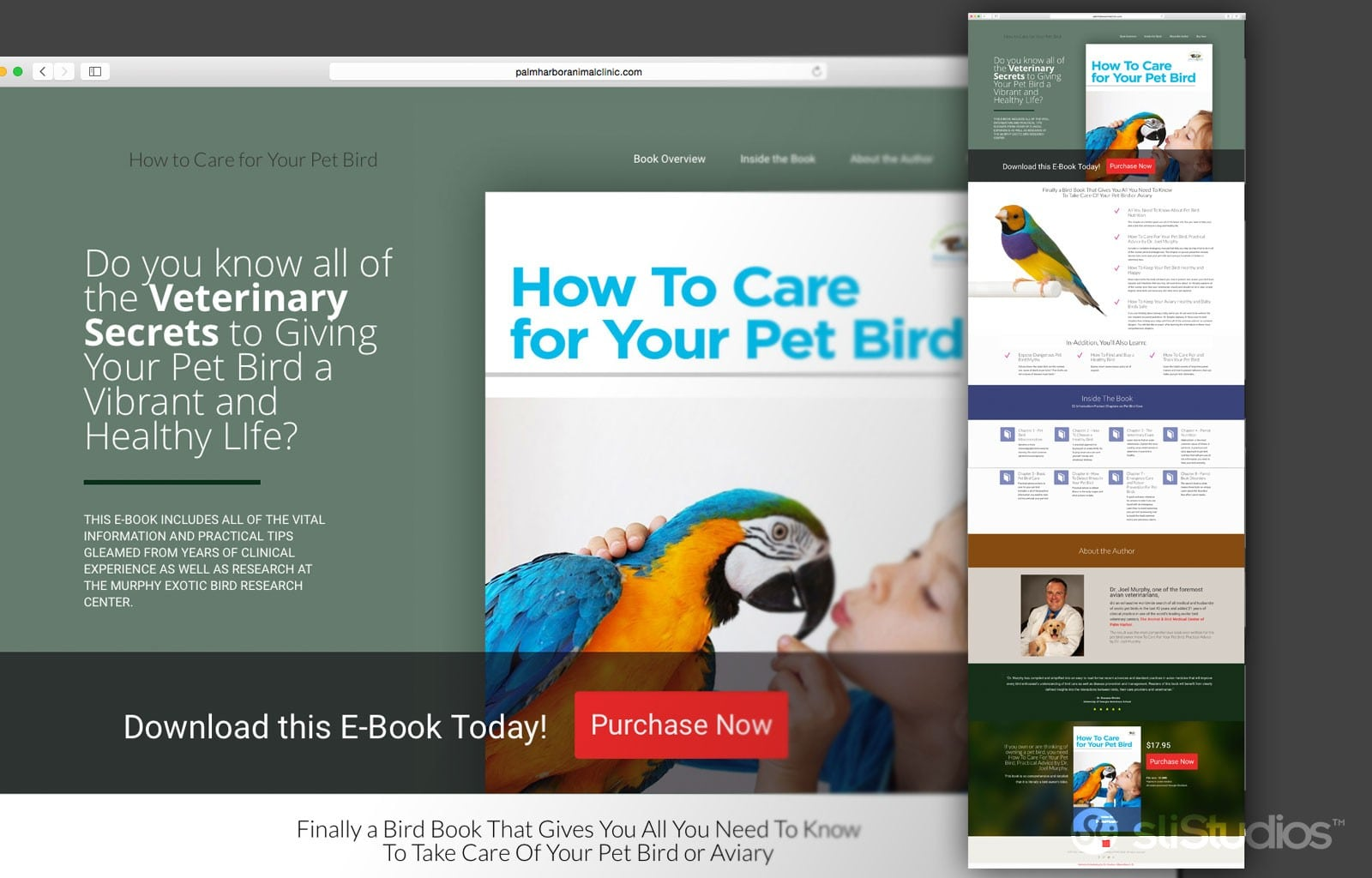 DrMurphy-Pet-Bird-Card-EBook