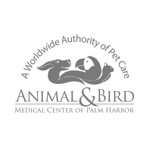 Animal & Bird Medical Center of Palm Harbor - Web Design & Marketing