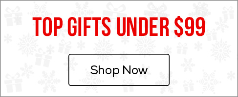 MM Top Gifts Under $99 Under Hero