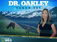 Dr. Oakley Yukon Vet