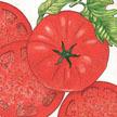 Tomato: Beefsteak image