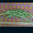 Bean, Yardlong / Asparagus: Thai White Seeded image