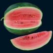 Watermelon: Black Diamond Yellow-Belly Strain image