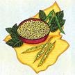 Cowpea: California Blackeye Pea image