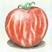 Tomato: Tigerella image