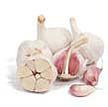Garlic: Metechi image