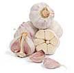 Garlic: Siberian image