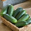 Cucumber: Jackson Classic image