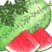 Watermelon: Crimson Sweet image