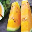 Watermelon: Orangeglo image