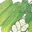 Cucumber: National Pickling image