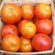 Tomato: Glacier image