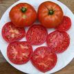 Tomato: Peron Sprayless image