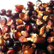 Corn: Chocolate Cherry image