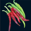 Peppers: Cayenne Long Thin image