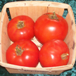 Tomato: Neptune image