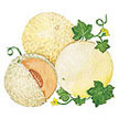 Melon: Three Flavor Blend image