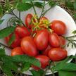 Tomato: Pisa Date image